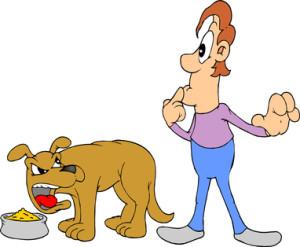 Dog - Angry 3